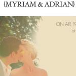 Myriam wedding_French chateau_video trailer hp_603x380