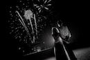 2014_Voeux_Chateau de Varennes_fireworks_bw_130